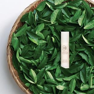 化粧水、乳液、美容液がひとつになったオールインワンセラム。奈良の大和高原で、自然農法栽培された大和茶など天然原料100%のセラムで忙しい女性の肌を健やかに美しく保ちます。QUON ビューティーアクチュアライザー<オールインワンセラム>50㎖¥3,800・税別(アルデバラン)