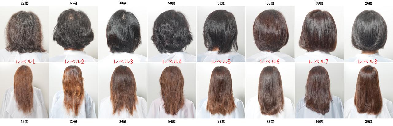 上の写真は20~60代女性の後ろ姿。左から美髪レベル1(低)~8(高)同じ年代でも髪の美しさレベルには差があります。